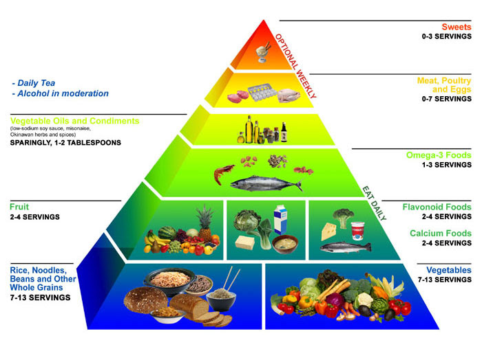 body fat percentage world health organization