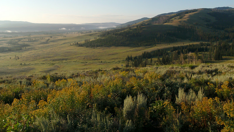The northern flanks of Mount Washburn in prime grizzly bear country in Yellowstone National Park.