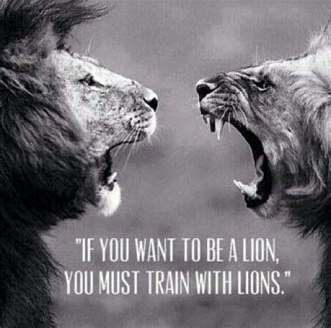 Train With Lions Pictures, Photos, and Images for Facebook