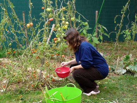 l_automne_au_p_tit_jardin_2