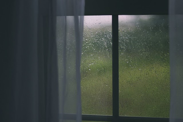 { Day 9 of Quarantine/Day 4 of Shelter in Place - More rain }