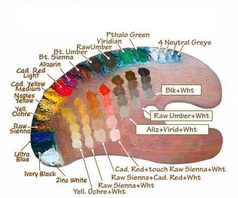 Paint Colors Palette for Oil Painting Portraits