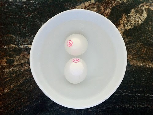 2 Pasturized Eggs in Bowl of Warm Water