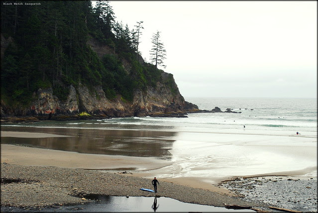 Smuggler's Cove - Oswald West State Park