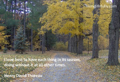 Quotes And Ideas On The Seasons Of Life