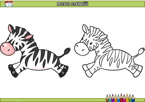 Koşan Zebra Boyama Etkinliği Meb Ders