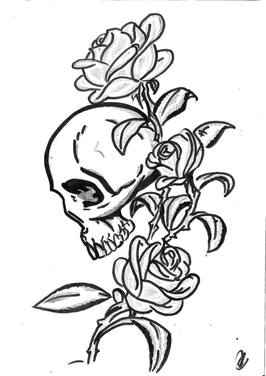 Roses And Skulls Drawing At Getdrawingscom Free For Personal Use