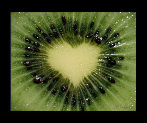kiwi love