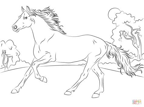 realistic horse coloring pages  adults coloring pages