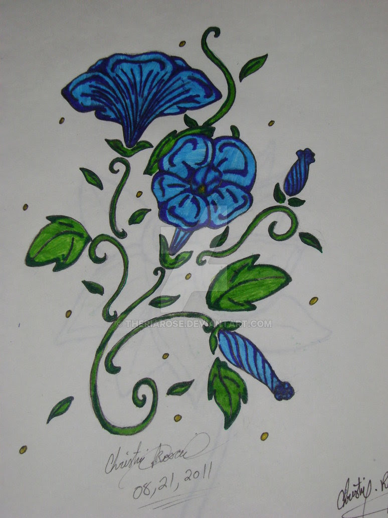 Morning Glory Flower Drawing At Getdrawingscom Free For Personal
