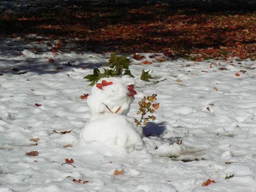 bonhomme de neige à l'érable.jpg