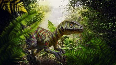 photo jungle fern raptor cretaceous period dinosaur