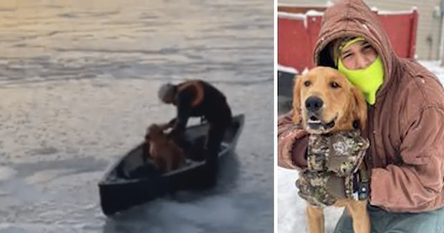 Family Learns Dog Is Missing When They See Video Of His Icy Rescue