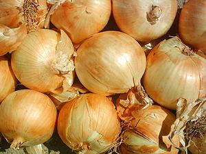Bolaños's Onions