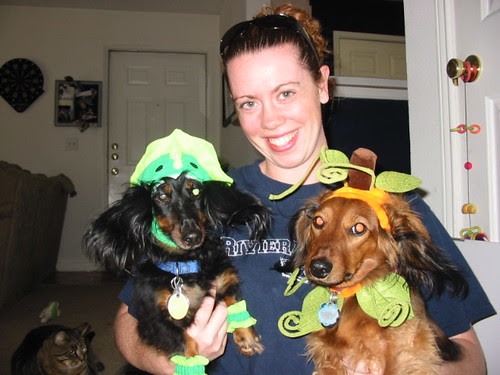 Maggie and the Halloweenies