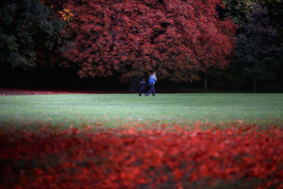 BATH, ENGLAND - OCTOBER 09:  People walk past fallen leaves as the trees begin to take on their autumn colours in The Royal Victoria Park on October 9, 2013 in Bath, England. Although later than normal, experts at the Forestry Commission are predicting a