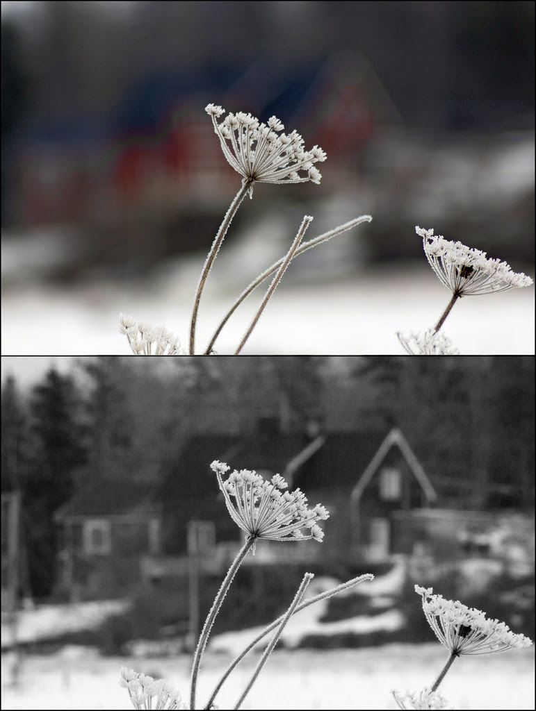 Winter Diptych