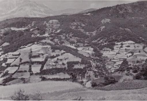 Μωσαϊκά χρήσης γης συνθέτουν το ελληνικό τοπίο (από το αρχείο του συγγραφέα)