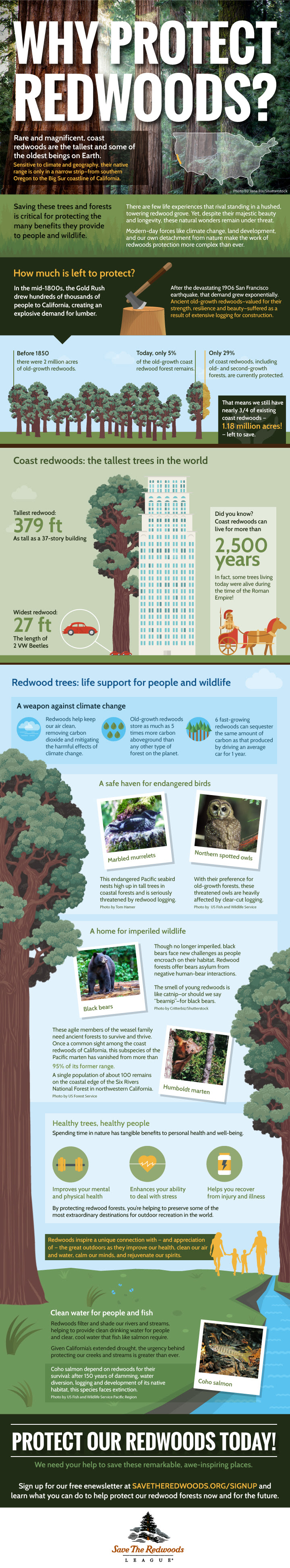 Why Protect Redwoods?