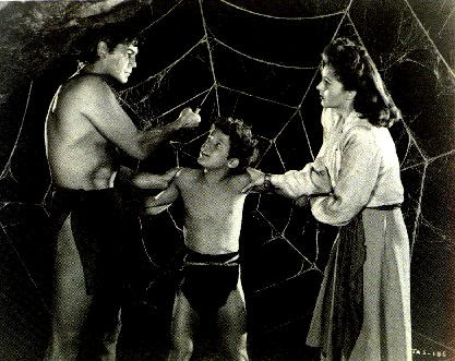 Boy gets caught in a giant spider's web.