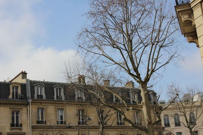 photo 16- Paris 16_zps4rlrpmga.jpg