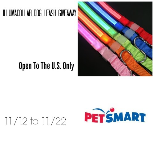 Illumacollar Dog Leash Giveaway