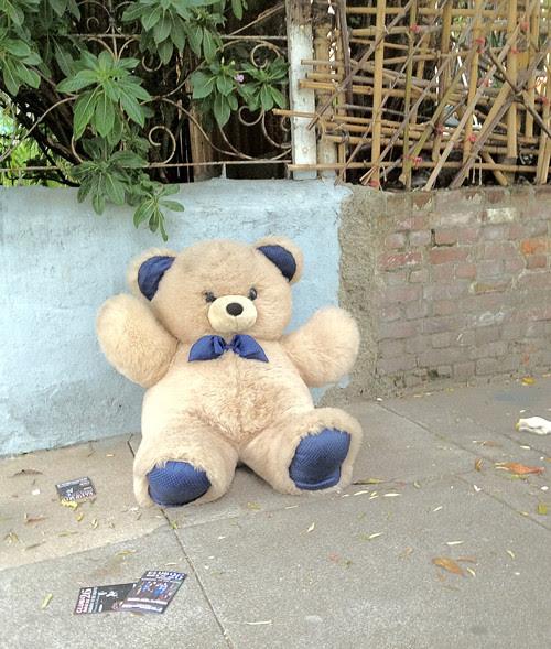 bear-on-street.jpg