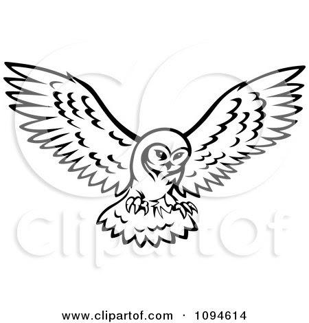 Cartoon Owl Black And White Crazywidowinfo