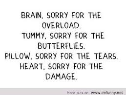 Brain, Sorry For The Overload. Tummy, Sorry For The Butterflies
