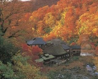 da5857c6a أغرب الأسفار: فوق قمه جبل فوجى باليابان: رحله فى فصل الخريف