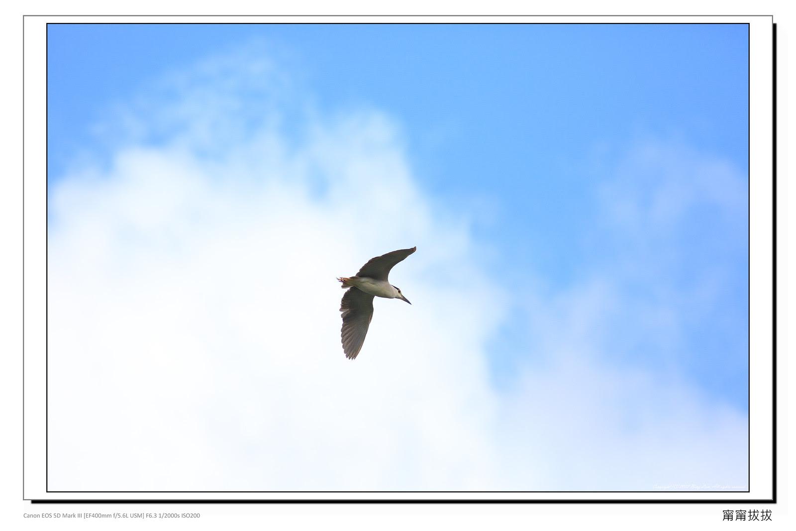 frame_BING6930