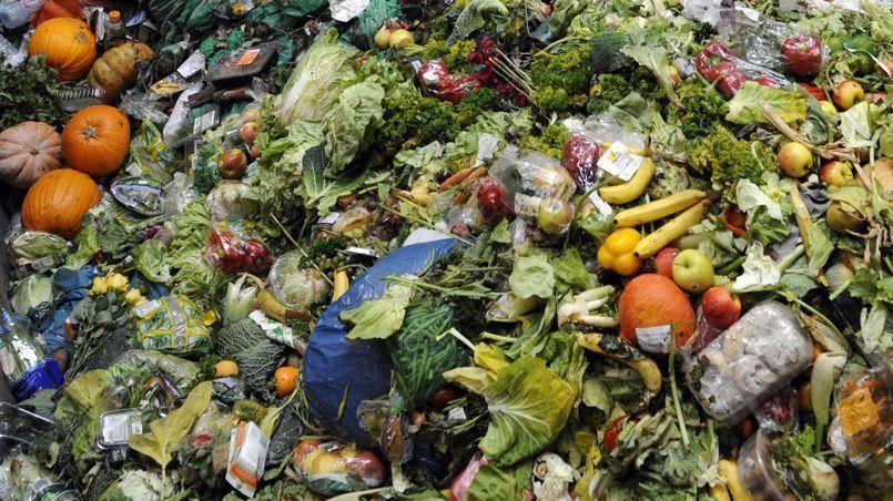 Chaque consommateur jette 20 et 30 kilos de nourriture jetés par an.