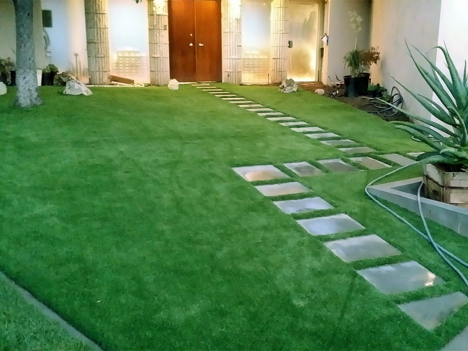 Artificial Turf Cost Bean Station Tennessee Landscape Design Front Yard