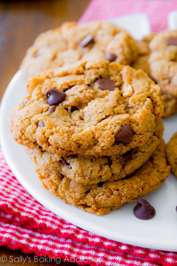 5 Ingredient Flourless Almond Butter Chocolate Chip Cookies - gluten free, simple, quick!