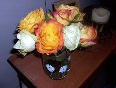 Roses_shanShower