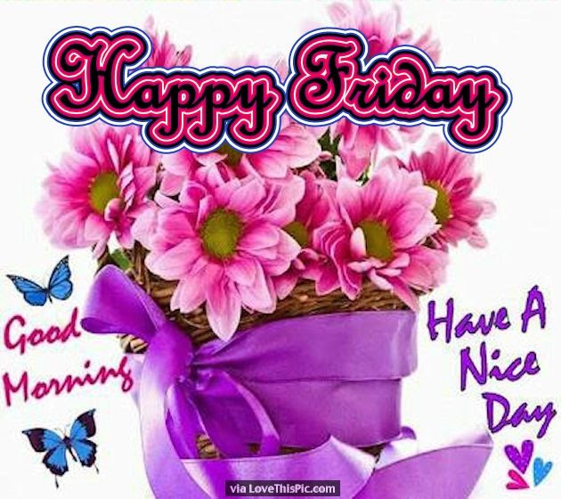 Friday Flowers Good Morning Pictures Photos And Images For