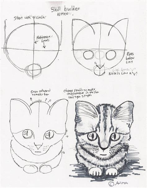 step  step cat drawing drawing   drawings