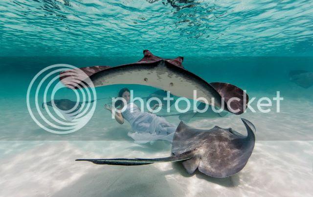 photo underwaterelenakalisc_zps927e7f7a.jpg