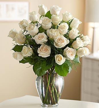 White Roses Vase 24 White Roses Vase