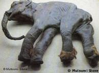 Un pequeño mamut encontrado en Siberia, aplastado por el hielo, pero completo.