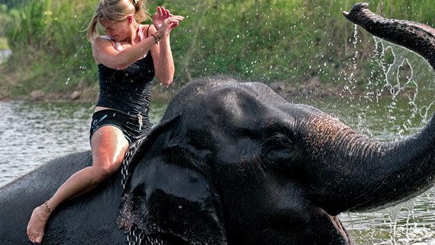 Woman riding an elephant through a river