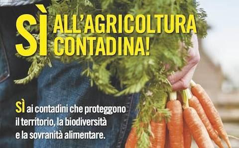 Risultati immagini per campagna popolare agricoltura contadina
