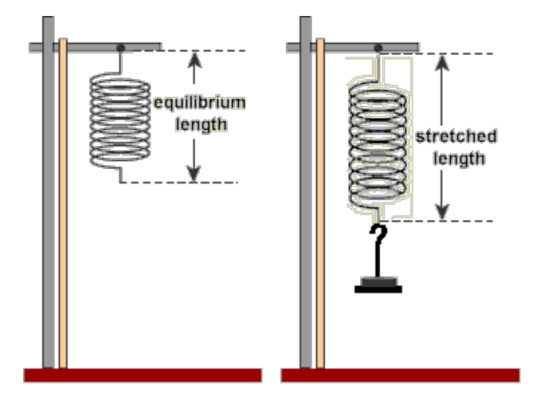 experiment of hookes law Hooke's law experiment a coil spring is hanged with a weight hanger and  pointer attached to its end different known weights with equal increments (in this .