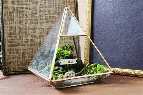 DIY Ring Box Terrarium: Step by Step   Consumer Crafts