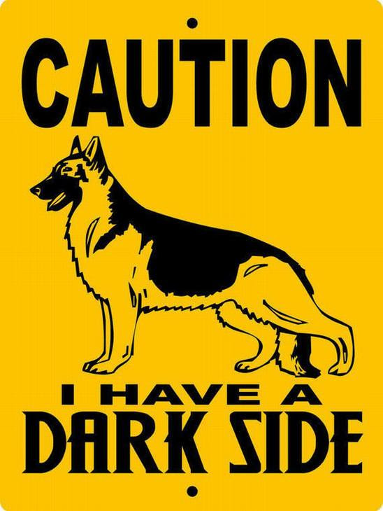 Hilarious Beware Dog Signs Funny Babamail