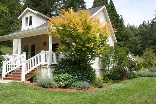 Front Yard Curb Appeal - Landscaping Network