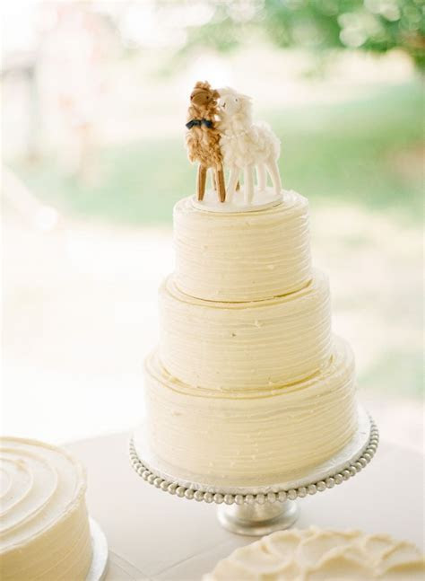 I want to show Nicole these alpaca cake toppers. They look