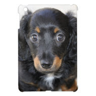 Dachshund iPad Mini Case