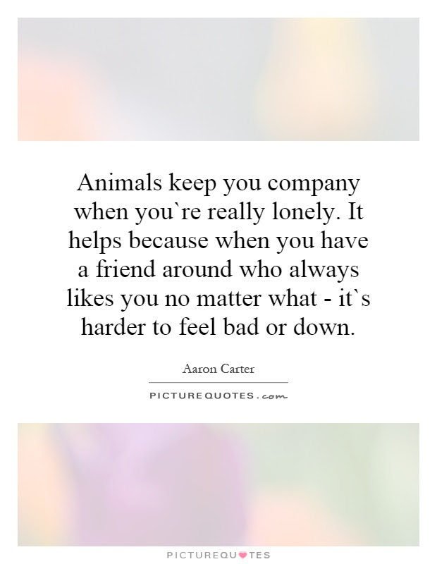 Animals Keep You Company When Youre Really Lonely It Helps