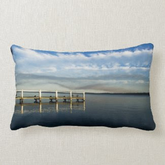 Cloudy Basin Pillow